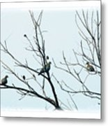 Winter Doves Metal Print