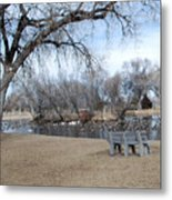 Winter Duck Pond Metal Print