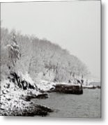 Winter Finery Metal Print
