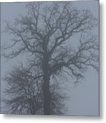 Winter Fog Metal Print