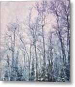 Winter Forest Metal Print by Priska Wettstein