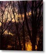 Winter Forest Sunrise Metal Print
