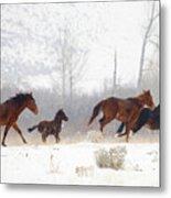 Winter Gallop Metal Print