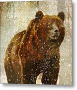 Winter Game Bear Metal Print
