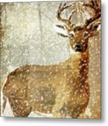 Winter Game Deer Metal Print