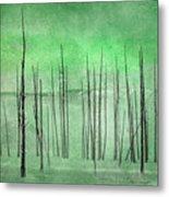 Winter Green  7913green Metal Print