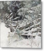 Winter Hare At The Fence Metal Print
