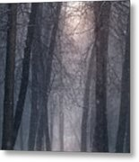 Winter Hush Metal Print