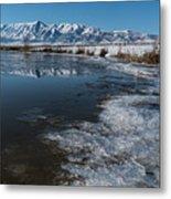 Winter Ice Flows Metal Print