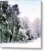 Winter Impressions Metal Print