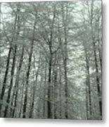 Winter In Germany Metal Print