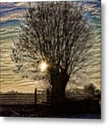 Winter In Holland 3 Metal Print