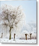 Winter In Holland Metal Print
