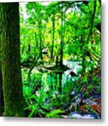 Winter In Paradise Metal Print