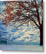 Winter In Peachland Metal Print