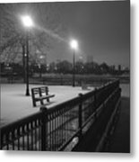 Winter In The Park Metal Print