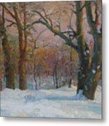 Winter In The Wood Metal Print