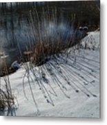 Winter Lake View Metal Print