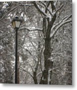 Winter Lamp Post Metal Print
