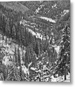 Winter Landscape In Giurgeu Mountains Metal Print