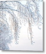 Winter Landscape With Snow-covered Trees Metal Print
