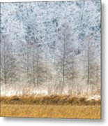 Winter Layers Metal Print