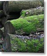 Winter Log Mossy Patterns Metal Print