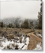 Winter Mist Metal Print