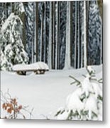 Winter Moments In Harz Mountains Metal Print