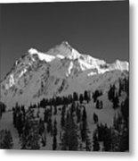 Winter Mountain Monochrome Metal Print
