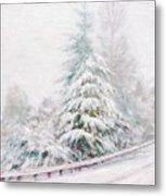 Winter Of  04 Metal Print