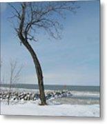 Winter On Lake Erie Metal Print