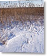 Winter On The Prairie Metal Print