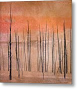 Winter Orange  7913orange Metal Print