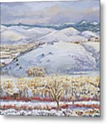 Winter Panorama From The River Mural Metal Print