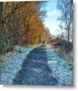 Winter Path In Scotland Metal Print