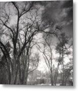 Winter Pathways Metal Print