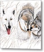 Winter Play Metal Print