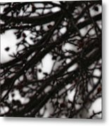 Winter Rain Metal Print