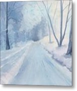 Winter Road Krkonose Mountains, From Photo By Milos Polacek Metal Print