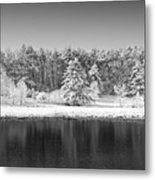 Winter Scene 2 Metal Print