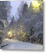Winter Scene 5 Metal Print