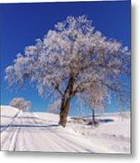 Winter Scene Genessee, Id Metal Print