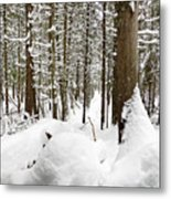 Winter Scene Print Metal Print