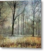 Winter Serenity Metal Print