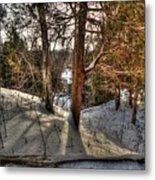 Winter Shadows Metal Print