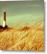 Winter Shore Breeze Metal Print