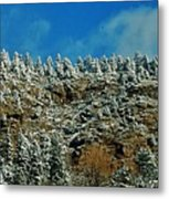 Winter Skyline Metal Print