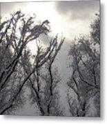 Winter Solstice Utah Metal Print