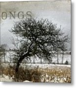 Winter Songs Metal Print